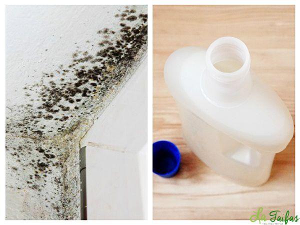 Oțetul alb este un curățitor și un dezinfectant natural foarte bun. În plus, este ieftin și ușor accesibil oricui. Ucide bacteriile în proporție de 99%, mucegaiul în proporție de 82% și virusurile în proporție de 80%.