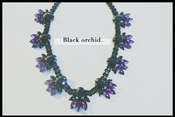 The Black Orchid.