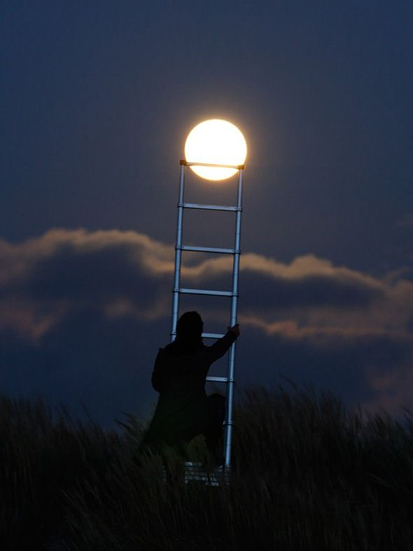 Moon w/ladder pic. Very cool.: Ladder, Climbing, Clever Photography, Laurent Washing, Favorite Places, Photo Ideas, Moon, Moon Photo, The Moon