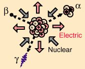 BETA RADIOACTIVITY ➡ Beta particles are just electrons from the nucleus. The high energy electrons have greater range of penetration than alpha particles, but still much less than gamma rays. The radiation hazard from betas is greatest if they are ingested.  Beta emission accompanied by emission of an electron antineutrino which shares the momentum & energy of the decay. Emission of the electron's antiparticle, the positron, is also called beta decay. (6.28.13)