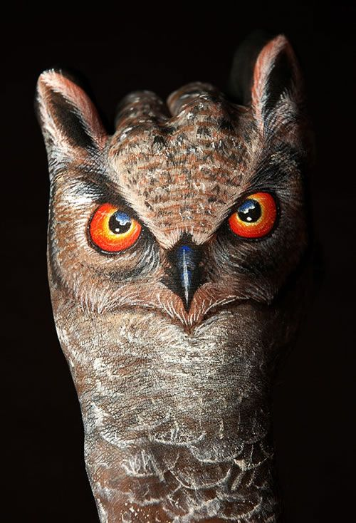 owl art - Google Search