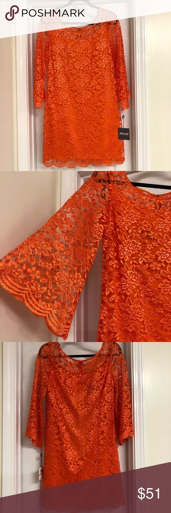 Muse $148 orange lace dress with sleeves, size 6 Muse orange lace sleeved dress. Size 6. Lace overlay over body, with pure lace sleeves. Sleeves reach about mid-forearm. Perfect dress for any special occasion! *Please ask any questions before purchase. No returns* Muse Dresses Long Sleeve