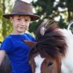 Experience Voucher: Full day pony experience for children
