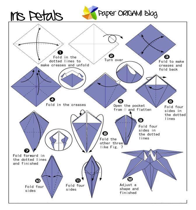 400 best origami site fun images by rebekka smith on pinterest how to make an origami iris flower mightylinksfo