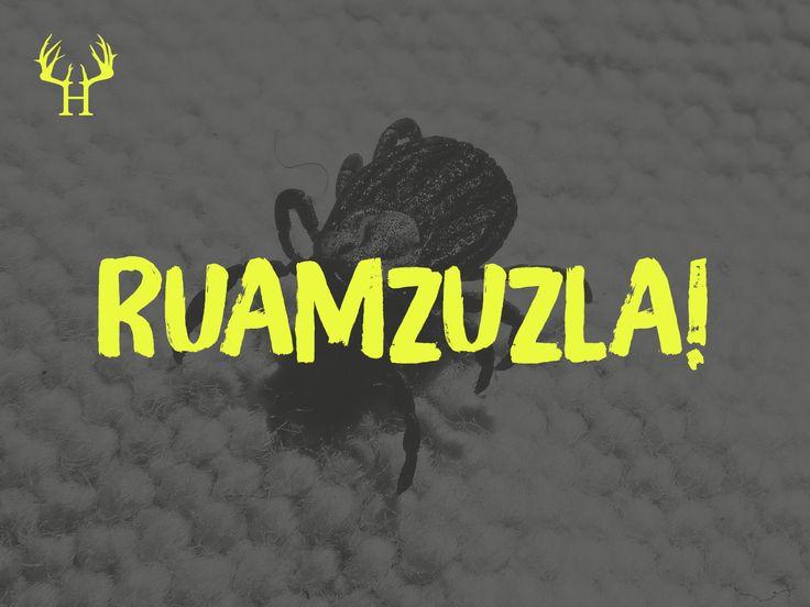 Makierts an richtign Ruamzuzla! 😉 | Bayerische Sprichwörter und Sprüche zum Pinnen und Sammeln. Egal ob Wort, Spitzname, Spruch oder Schimpfwört…
