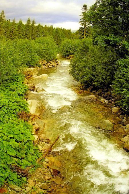 Lapusnicul Mare River, Retezat Mountains, Romania, www.romaniasfriends.com