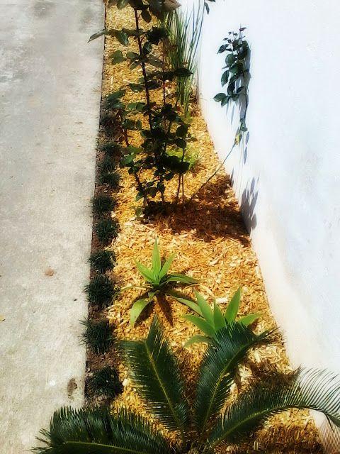 Jardinagem-Uso da Serragem