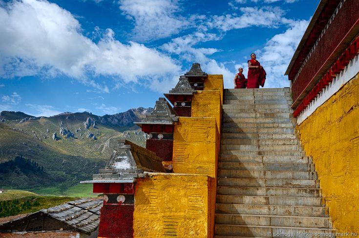 Buddhista szerzetesek a kolostornál, Kanszu tartomány, Kína, 2017 Buddhist monks at the monastery, Gansu province, China, 2017 Photo: Somogyi Márk - http://www.somogyimark.hu #china #monk #buddhism #monastery #tibet