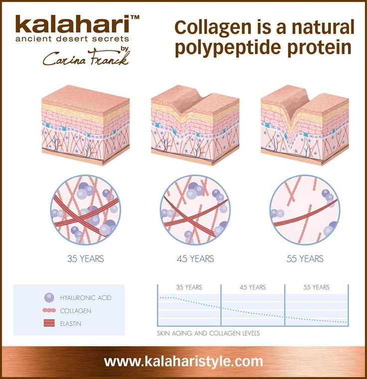 Collagen is a natural polypeptide protein and the most abundant protein in the body! Collagen is an important component of the skin that acts like a scaffold and the main building block for cells and tissues. Women produce less collagen than men and collagen is lost at a rate of 1% per year. Elastin is also a protein found in connective tissues of the body and skin.