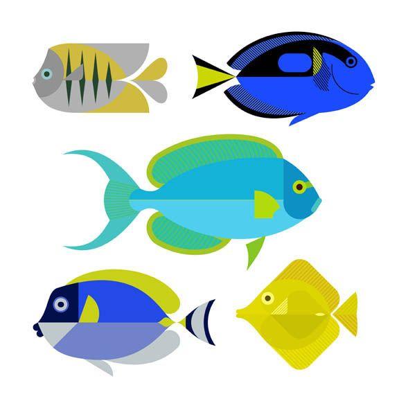 Scott Partridge - Illustration - reef fish series