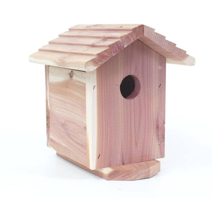 Outdoor Hidden Security Camera in Bird - SEE THE WORLD'S BEST COVERT HIDDEN CAMERAS AT http://www.spygearco.com/spy-cameras-with-audio.php