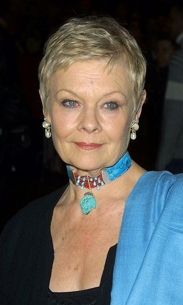 """A BEAUTIFUL lady-Dame Judy Dench. I love her style because she doesn't kill her """"look"""" with too much makeup, or fashion trend."""