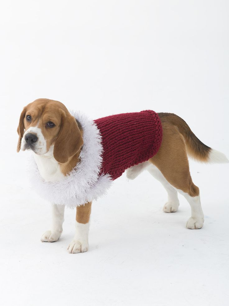 dog coat template - celebrator dog sweater in lion brand wool ease thick