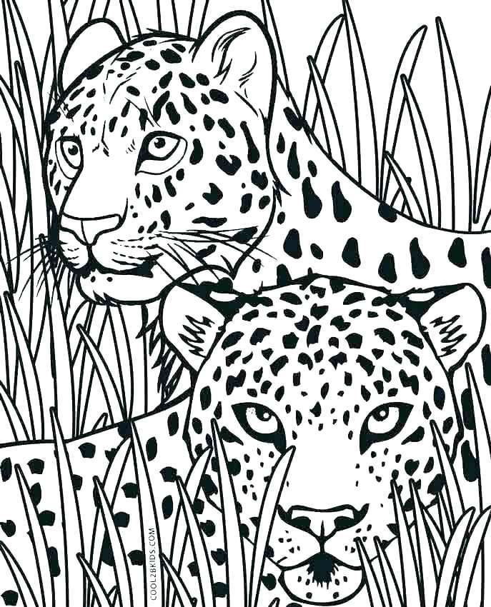 Baby Cheetah Coloring Page Coloring Pages For Kids Baby Cheetahs Coloring Pages