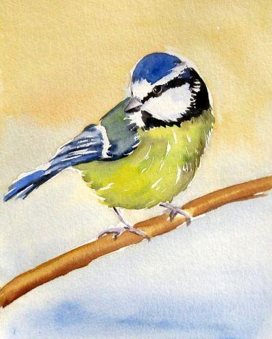 """Blue Titt  ""Watercolor  , painting by artist Meltem Kilic"