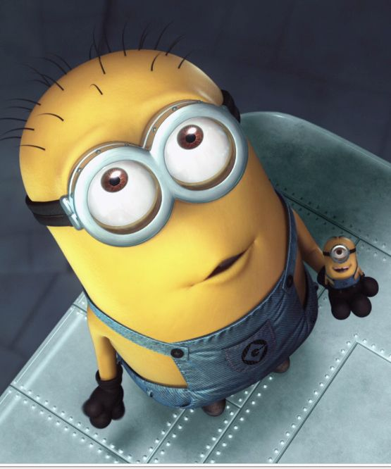 *MINIONS ~ Despicable Me II, 2013