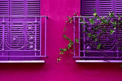 pink & purple balconies