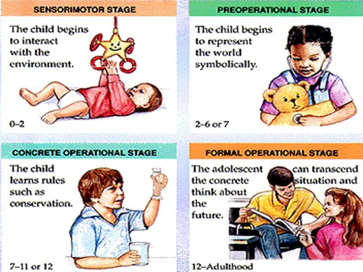 Preoperational Stage Observation Essay Sample