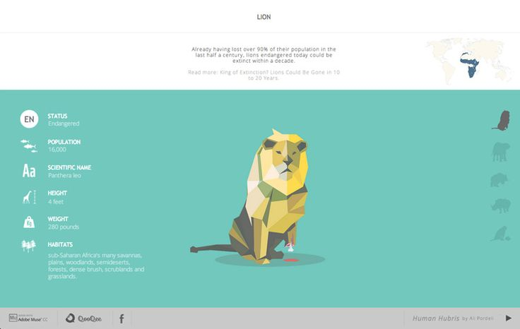 qooqee.com - WDZN | WebDesign Css Awards, submit your work free