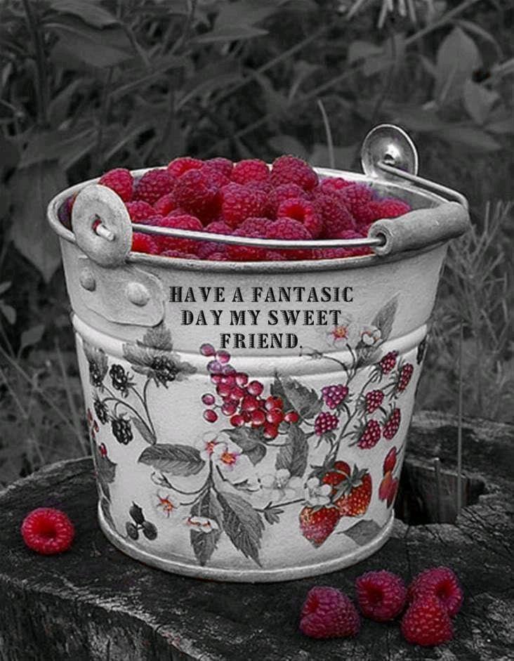 Raspberries-Himbeeren