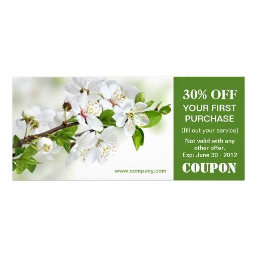 Spring coupon code