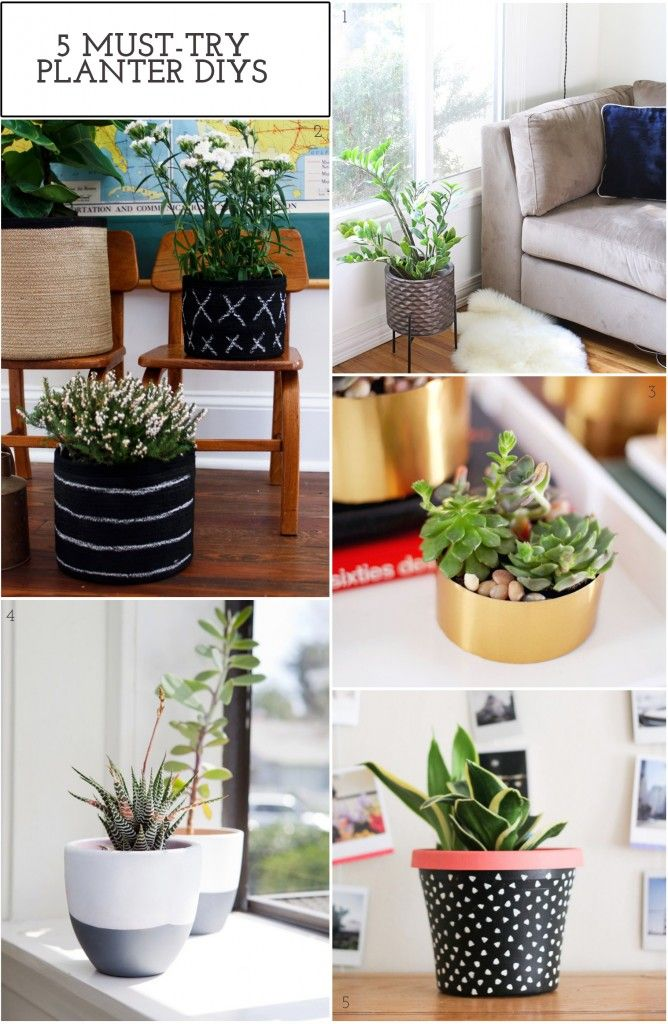 5 Must-Try Planter DIYS - The Crafted Life