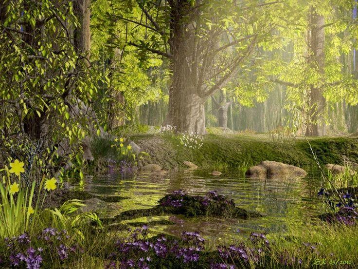 Hi-Def Pics - Enchanted Forests (10 photos)