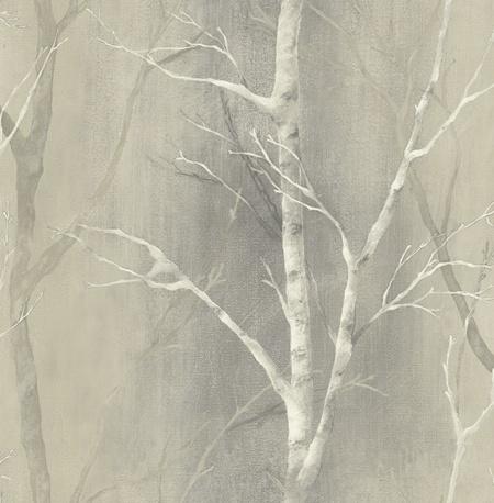 Birch Tree Wallpaper Home Depot   WHITE BIRCH TREES ON ...