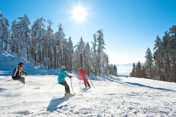 Den #Weitblick im #Mühlviertel beim #Skifahren und #Snowboarden genießen. Weitere Informationen zu #Skiurlaub im Mühlviertel in #Österreich unter www.muehlviertel.at/skifahren - ©Oberösterreich Tourismus/Erber