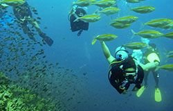 Beach activities include diving on Hua Hin