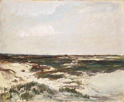 The Dunes at Camiers,  Charles-François Daubigny