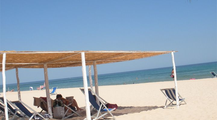 Beach Chairs and panoramic view at Flamingo Resort Sardinia