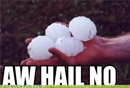 To Hail With This Weather! | Things That Make Me Laugh ...