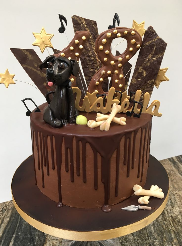 Chocolate Indulgence 18th Birthday Cake, with modelling chocolate Labrador, Chocolate Shards, Chocolate 18.