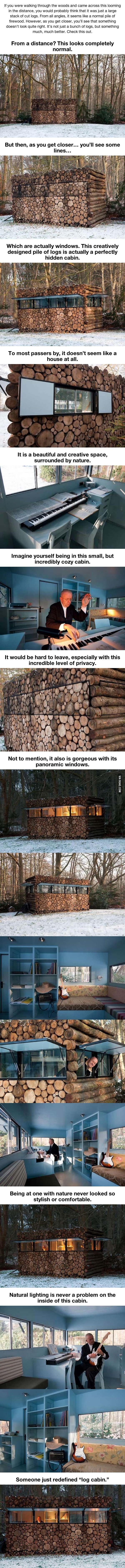 It Might Look Like A Normal Stack Of Firewood. But When You Step Closer… WHOA!