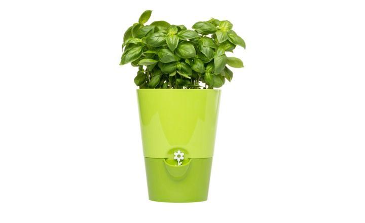 emsa Kräutertopf Fresh Herbs, gefunden bei Möbel Höffner. https://www.hoeffner.de/artikel/10536902
