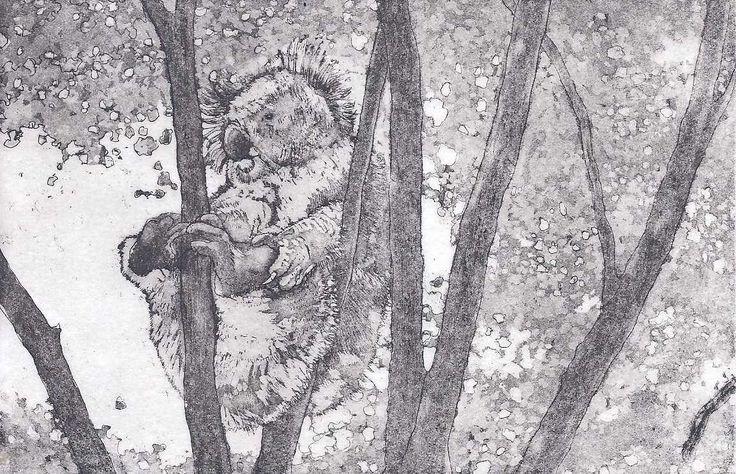 "Michelle Hagger. ""Koala"", Etching  Aquatint. $80.00"