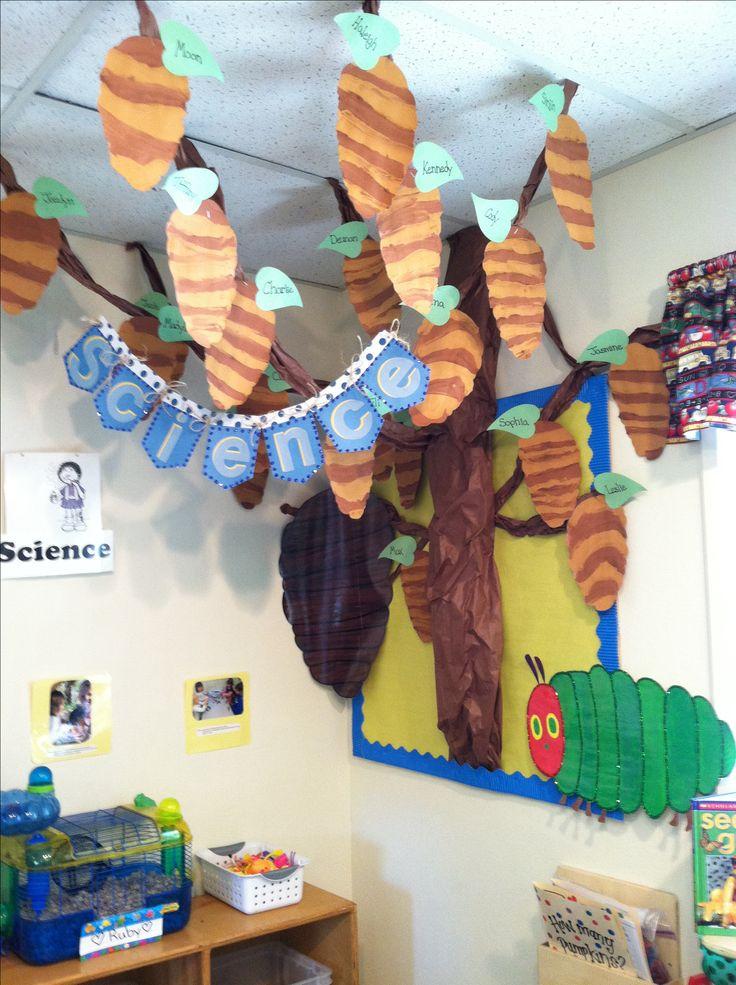 The very hungry caterpillar classroom. Hanging chrysalis.