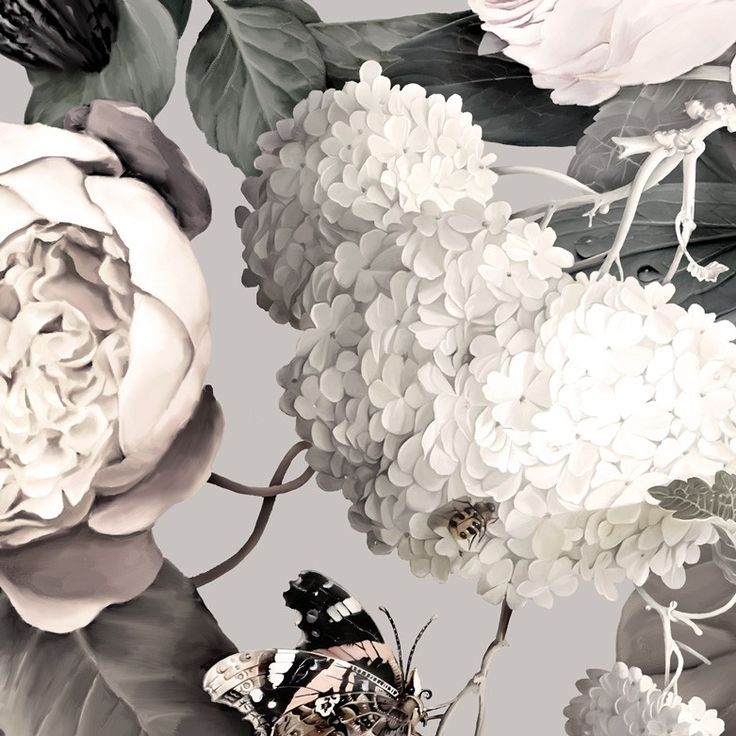 Dark Floral II Gray - Floral Wallpaper - by Ellie Cashman Design