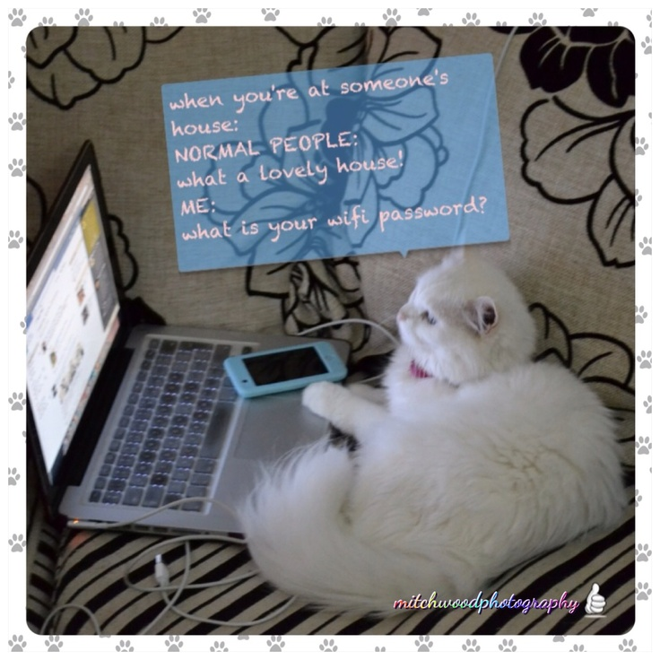 so what's your wifi password? hehehe!