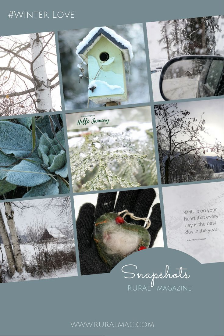 Sharing some wintery images on our Instagram feed www.ruralmag.com