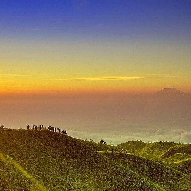 Gunung Prau, Dieng, Wonosobo, Jawa Tengah, Indonesia