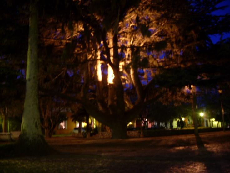 La Plaza de Armas del barrio histórico de Colonia del Sacramento, iluminada por las luces multicolores de la noche.