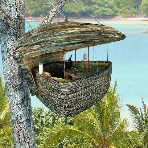 OrganicSoneva Letter, Birds Nests, Resorts, Tree Houses, Treehouse, Thailand, Islands, Trees House, Places