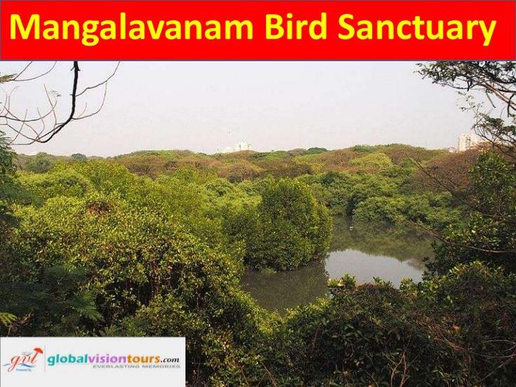 Mangalavanam Bird Sanctuary by Global Vision Tours via slideshare