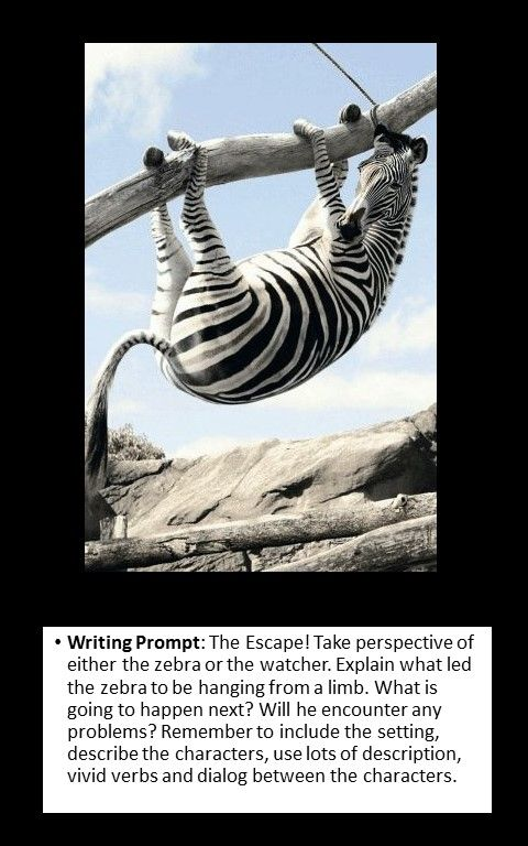 write about a point of your Read how to master points of view in fiction writing and think about how narrative structure in fiction can be informed by character perspective or the type of story you want to tell.