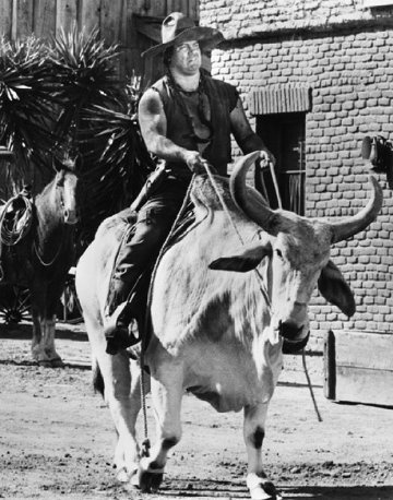 "Mongo (Alex Karras) rides into town, hoping to ""multilate the new sheriff.""  Blazing Saddles (1974)"