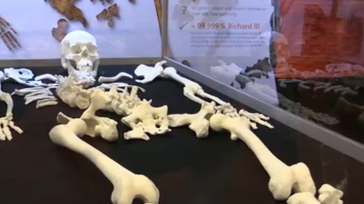 Watch a great video about the interactive science for visitors at the Royal Society Summer Science Exhibition 2015 filmed by LondonLive.