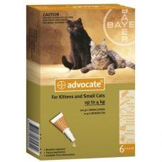 Advocate cat este o soluţie antiparazitară pentru pisicile cu greutatea între 0 – 4 kg, cu aplicare cutanată.