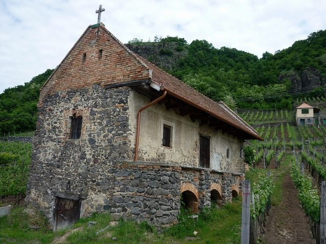 A typical old Somlo wine cellar, just above our shop #volcanicwines #winesofhungary #hungary #wines